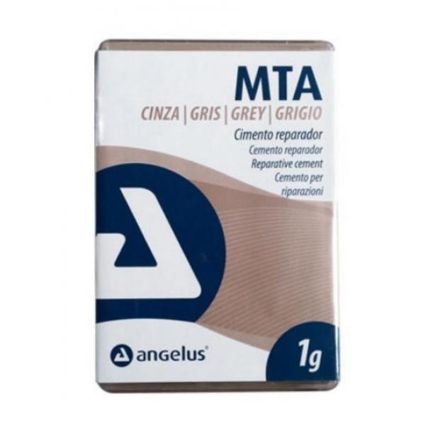 MTA CEMENTO REPARADOR GRIS 1GR -
