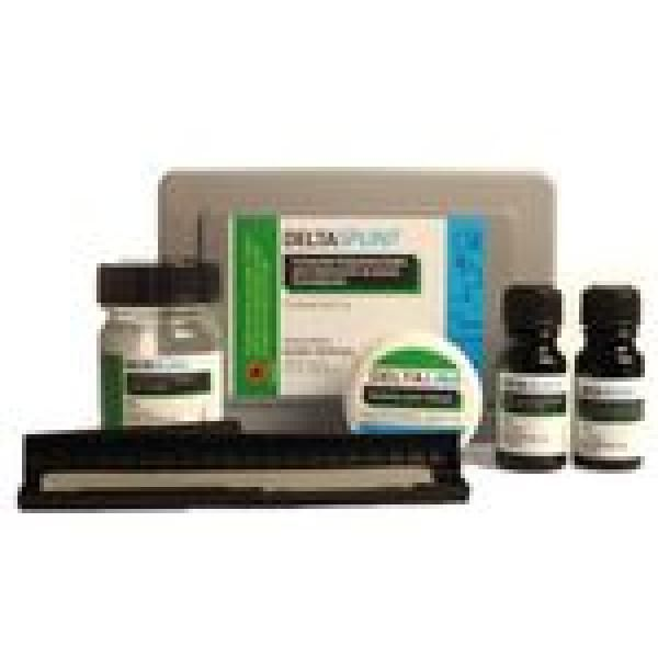 DELTA SPLINT KIT KUSS -
